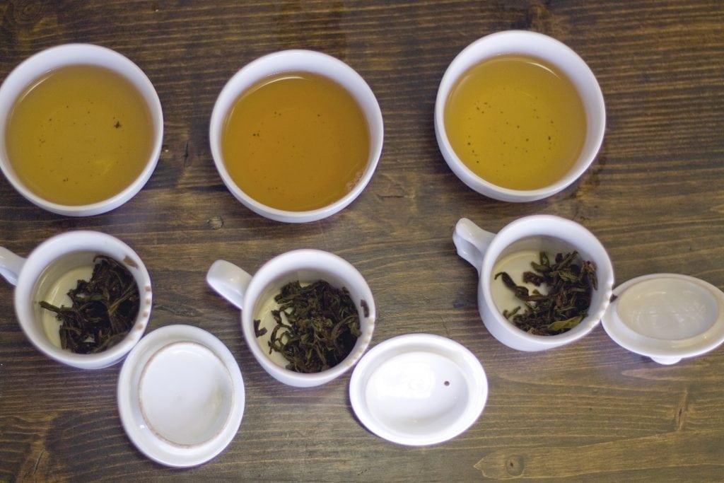green tea tasting